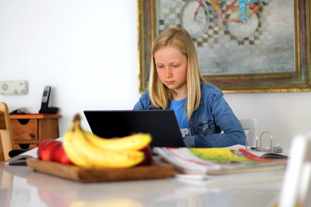 Girl learning school subject on laptop